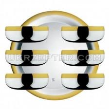 Барон - посеребренный набор для десерта с золотым декором LS-163-B-DG